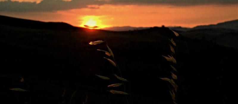Il leggero tramonto di Elisabetta Di Franco