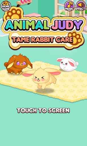 Animal Judy: Tame Rabbit care