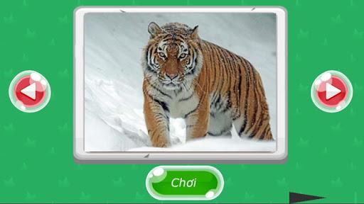 Xếp hình động vật screenshot 10