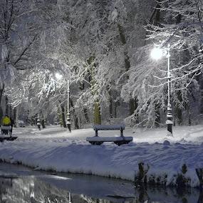 by Gigi Furtuna - City,  Street & Park  City Parks