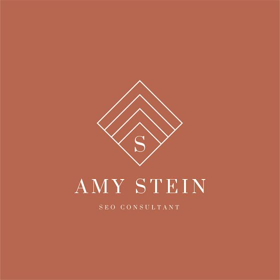 Stein SEO Consultant - Logo Template