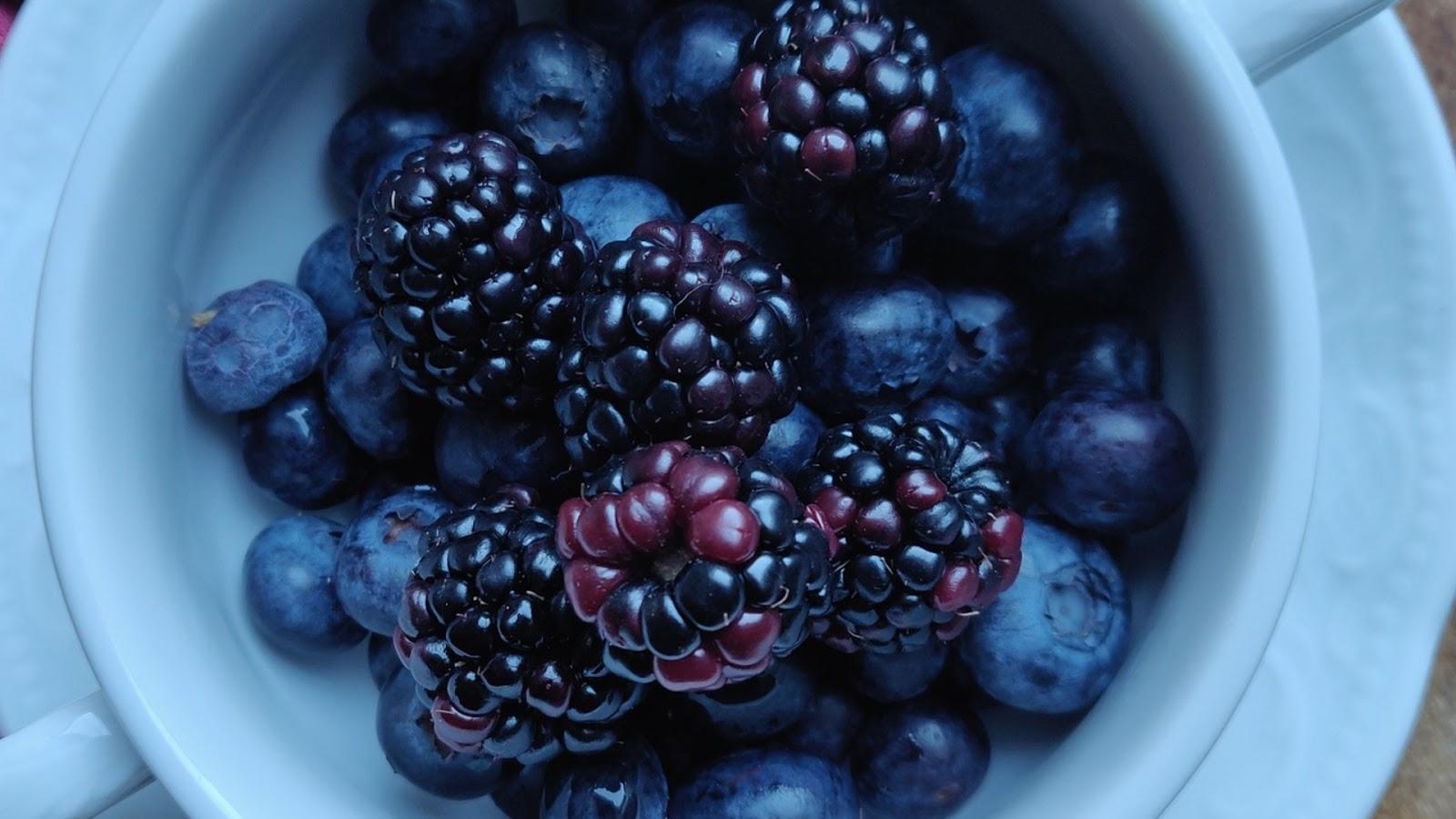types of blackberries