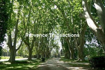 terrain à Beaumes-de-Venise (84)