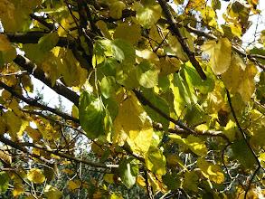 Photo: Лето? Осень? Весна? Нет, Зима! :-)