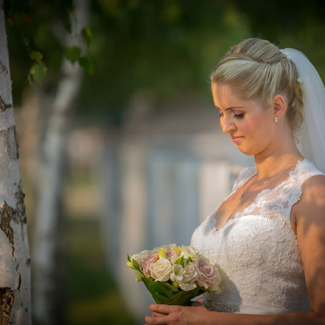 Wedding photographer Tóth Ferenc (TothFerenc). Photo of 15.10.2016