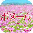 美容カイロ ボヌール 公式アプリ
