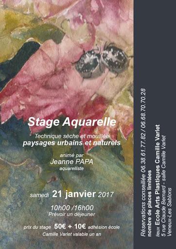 JPAPA stage janv 2017