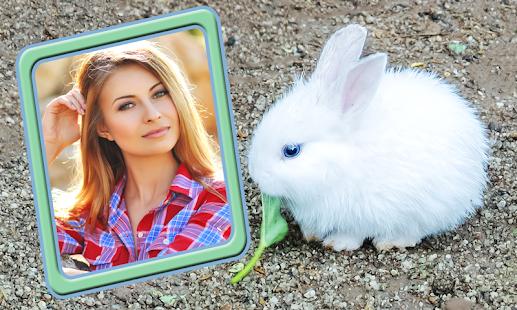 Cute Animals Photo Editor - náhled