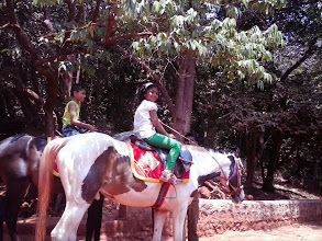 Photo: Riding a horse - Independently ?