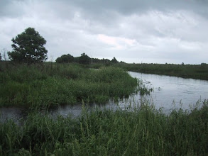 Photo: St. Johns River provided lots of resources to the folks living along its shores. Headwater in Brevard County.