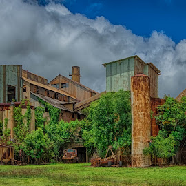 sugar mills by Kelley Hurwitz Ahr - Buildings & Architecture Decaying & Abandoned ( surfing )