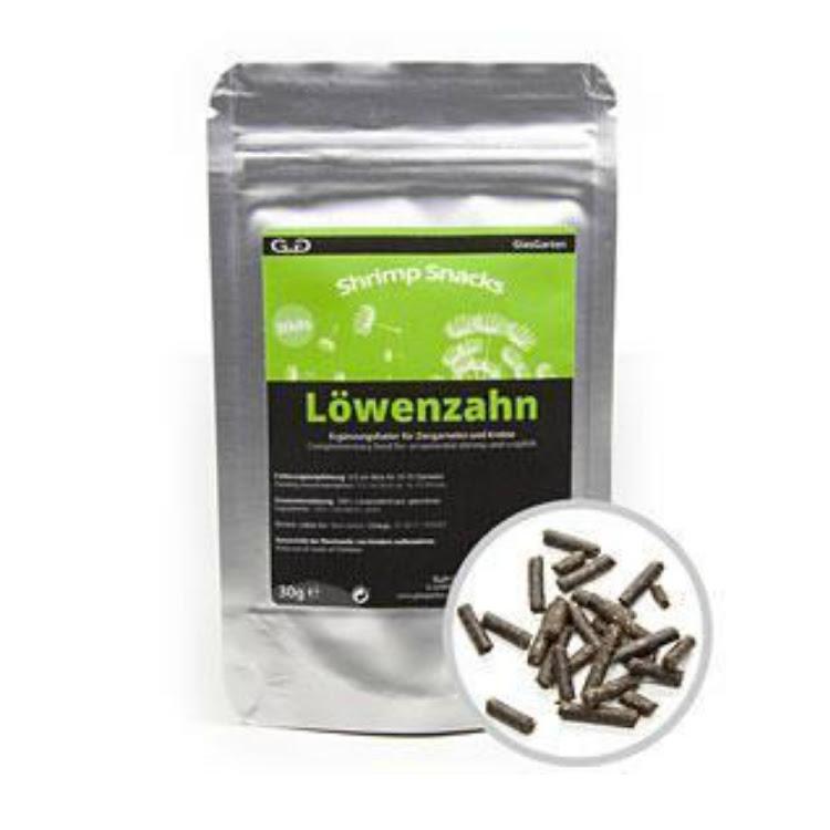 GlasGarten Lowenzahn (Dandelion)