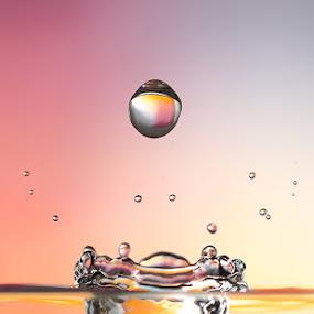 splash bomb by Lessy Sebastian - Abstract Fine Art (  drop, splash,  water,  macro,  bomb,  orange,  crown )