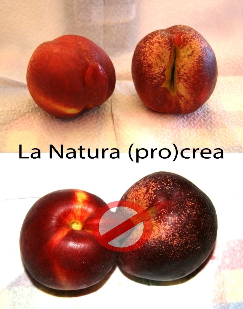 Natura di Zola Lorenzo