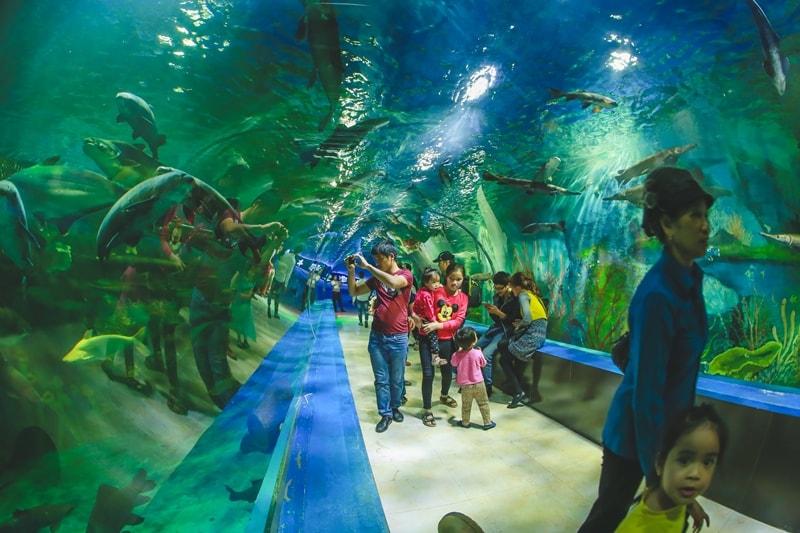 Thiên Đường Bảo Sơn- điểm du lịch Hà Nội ngày tết thú vị