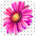 Chrysanthemum Flower Color By Number - Pixel Art icon