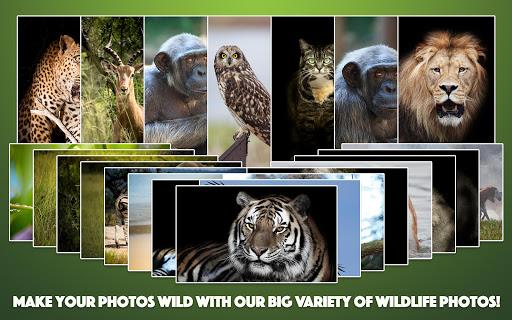 Wild Animal Photo Frames 4.2.1 screenshots 8