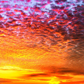 Darwinian Sunset by Alister Munro - Landscapes Cloud Formations (  )