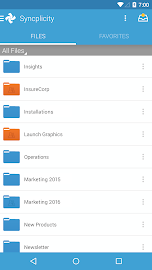 Syncplicity Screenshot 2