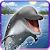 Dolphins and orcas wallpaper file APK Free for PC, smart TV Download
