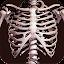 دانلود Osseous System in 3D (Anatomy) اندروید
