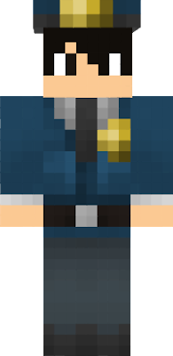 custom   Nova Skin