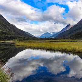 Clouds Over The Lake by Patricia Phillips - Landscapes Travel ( alaska clouds lakes tern summer )