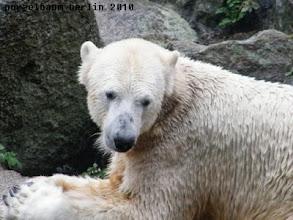 Photo: Knut wuenscht einen schoenen Samstag :-)