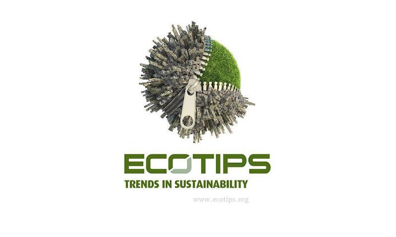 Nieuwsbrief: ecoTips in een nieuw kleedje - wat brengt 2016?