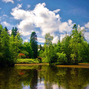 The little lake. by BethSheba Ashe - Landscapes Forests ( england, reflection, trees, summer, lake, day )