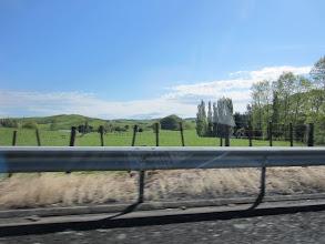 Photo: Camino de Rotorua: Típico paisaje verde de la Isla Norte