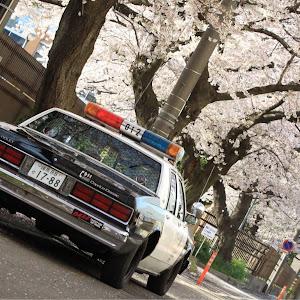 カプリス  ポリスパッケージ 9c1のカスタム事例画像 JEEP CAFE TOKYOさんの2019年04月06日10:02の投稿