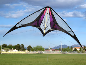 Photo: Purple Fade Paradox by Spirit Of Air Kites (From the Brian Todd Collection)