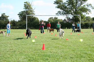 Photo: Lexy GSD racing against Charlie Golden in Fastest Recall