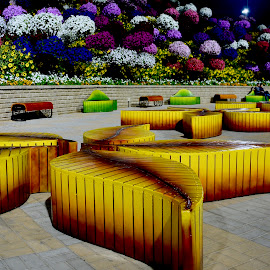 Artistic Benches by Nadeem M Siddiqui - City,  Street & Park  City Parks