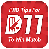 Tips and Predictions For Dream 11