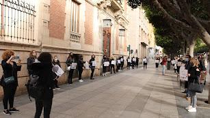 Concentración de los esteticistas profesionales ante la Delegación de Gobierno de la Junta.