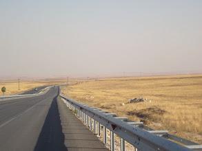 Photo: Notre fil conducteur depuis quelques centaines de kms maintenant..