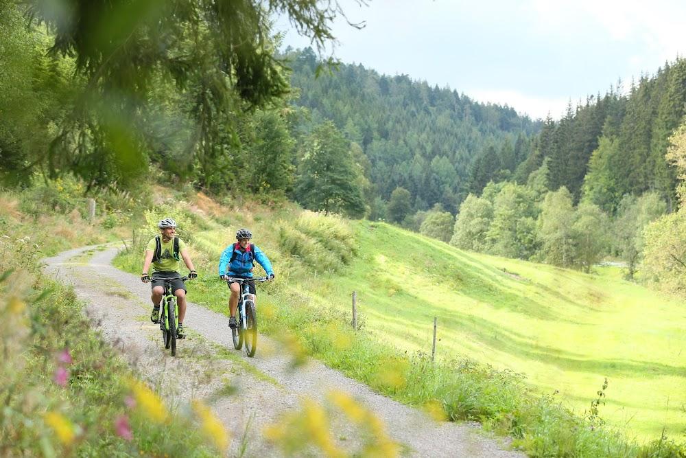 Zwei Radfahrer unterwegs auf dem Enztal-Radweg inmitten grüner Wiesen