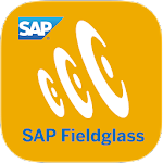 SAP Fieldglass Time Entry 1.0.52