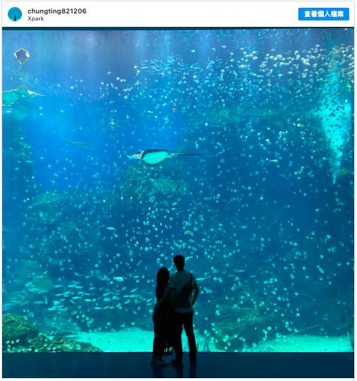 2021新春假期 到桃園 Xpark 水族館看魚