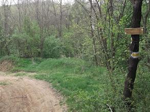 Photo: 11,4 km fordító hely (háttérben a fák között a kőkereszt)