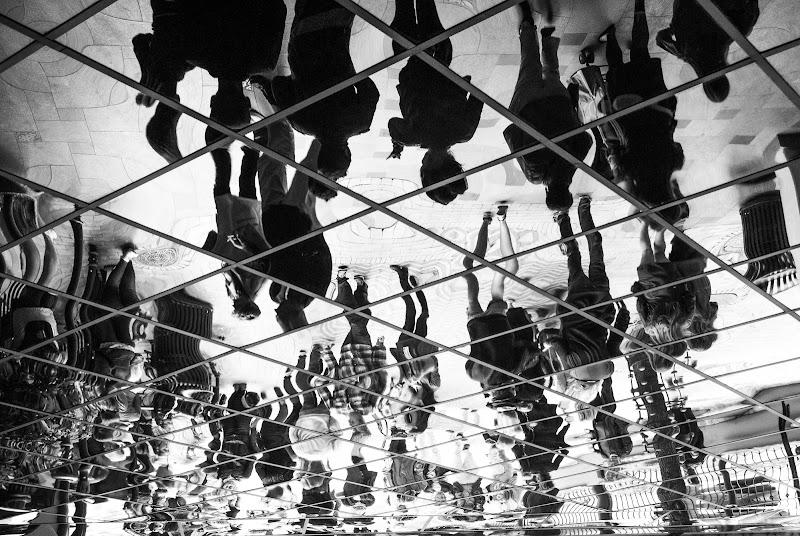 Sogno o son desto di Matteo Merli
