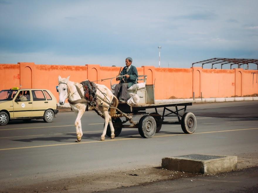 Возле аэропорта Марракеша «Менара»