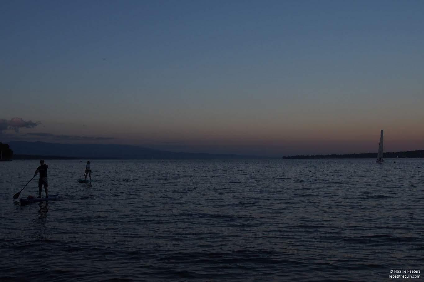 Meer van Genève (Le petit requin)