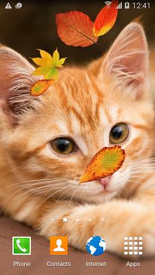 Cute Autumn Live Wallpaper - screenshot