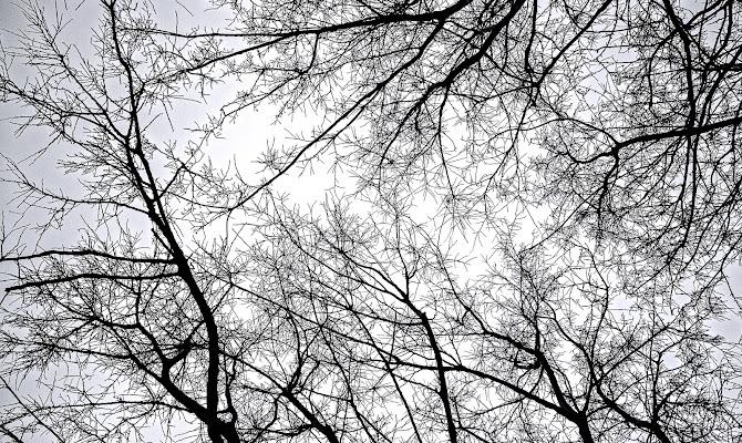 Winter sky di Mariano Romani