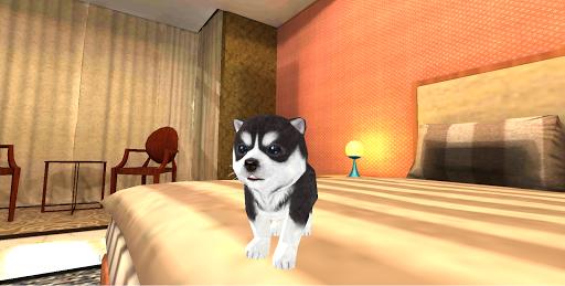 Hund Hündchen Simulator 3D