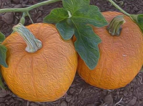 Homemade Pumpkin/butternut Squash Soup Recipe