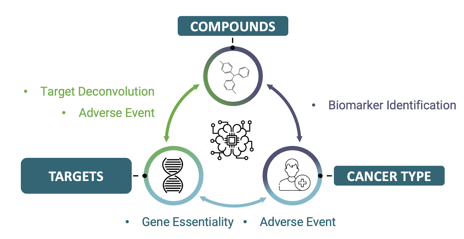 OneThree's Workflow for Target and Compound Discovery